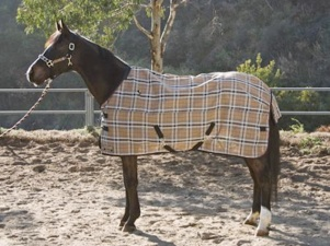 fly-sheet-protective-equine-433KPS121-01-2