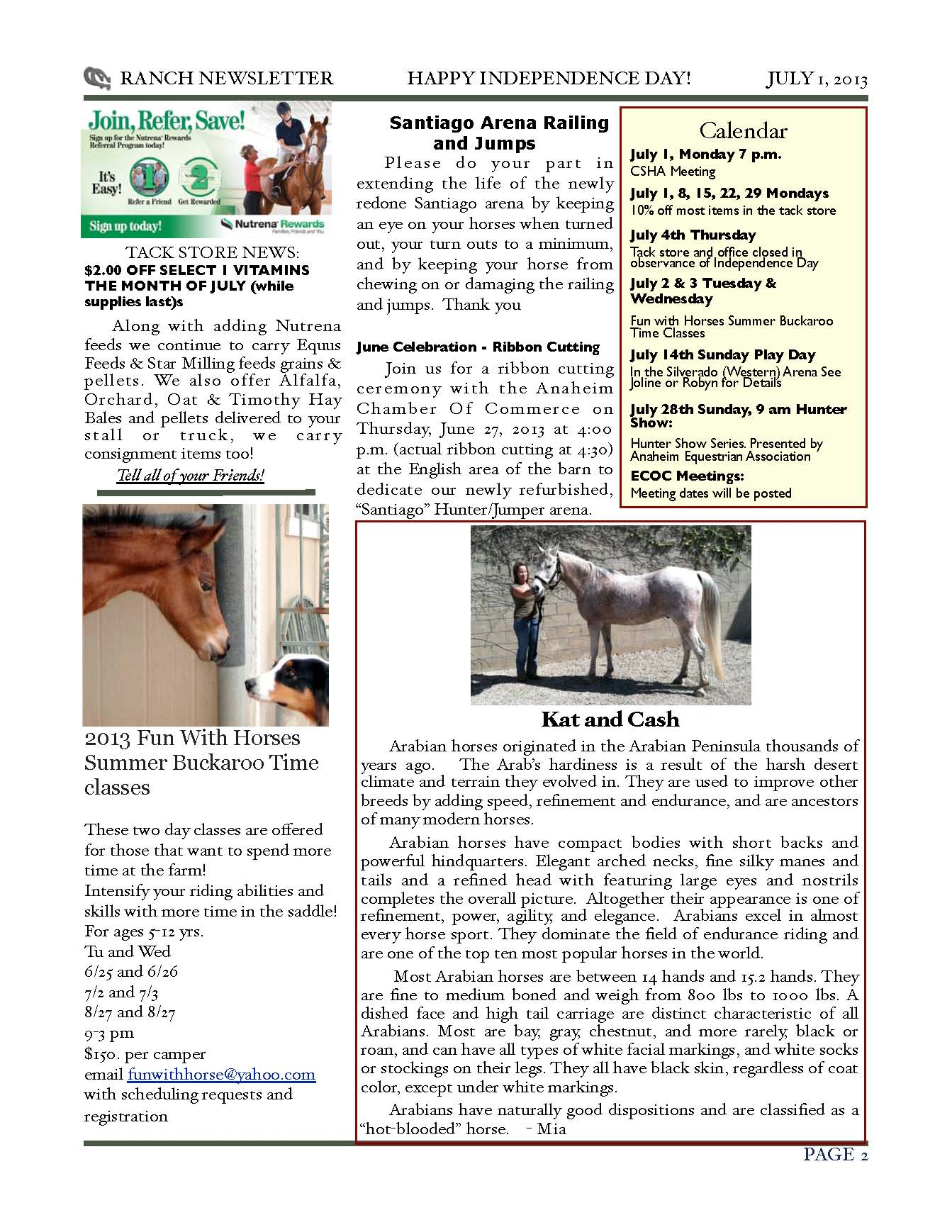 AEC-Newsletter-July-2013_Page_2